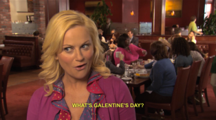 Galentines-Day-Parks-And-Rec